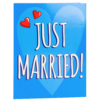 Surprise Card - just married